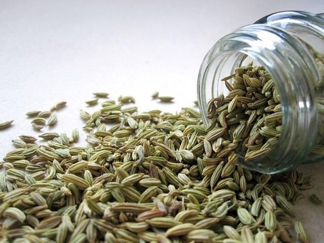Nasiona kopru włoskiego działają wiatropędnie i pomagają zapobiegać bolesnym wzdęciom po jedzeniu