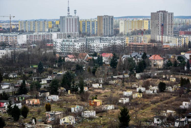 Koczowisko przy ul. Lechickiej