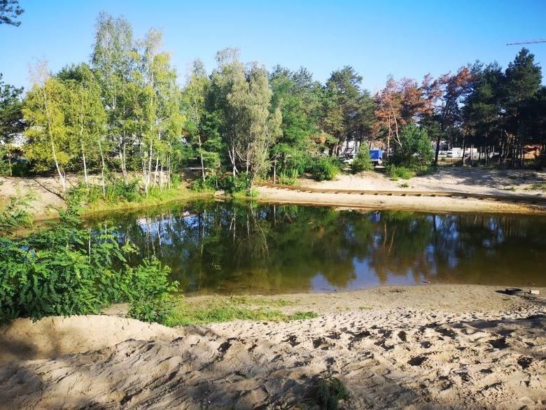 Pierwsze prace na Jarze rozpoczęły się w bezpośrednim sąsiedztwie stawu, który zostanie zrekultywowany i pogłębiony. Na brzegach stawu powstaną atrakcyjne