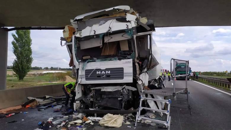Wypadek na A2 wydarzył się we wtorek, 3 września na 178. kilometrze autostrady. Zderzyły się dwie ciężarówki. Do zdarzenia doszło około południa.Przejdź