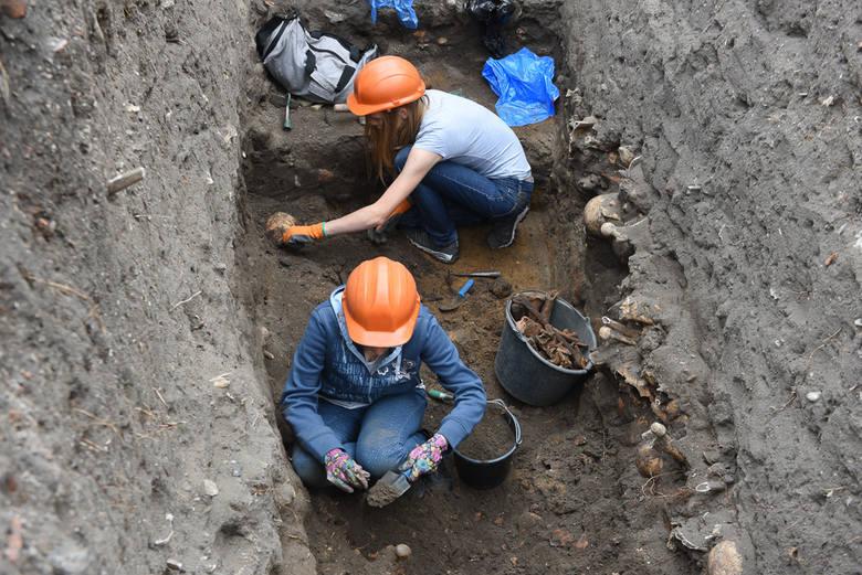 Adeptki i adepci archeologii z Uniwersytetu Mikołaja Kopernika w Toruniu, pracując pod wodzą prof. Krystyny  Sulkowskiej-Tuszyńskiej, zgłębiają tajemnice