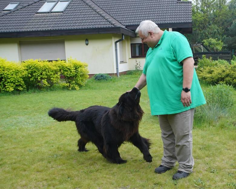 Zapadł wyrok w sprawie szczekającego psa Yogiego, który miał zatruwać życie sąsiadom - Błażejowi Winklerowi i jego żonie. Stanisław Smektała, właściciel