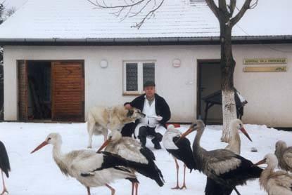 Nie wszystkie ptaki mogą liczyć na strawę w zimie, tak jak te z Kliniki Weterynaryjnej Andrzeja Fedaczyńskiego w Przemyślu.