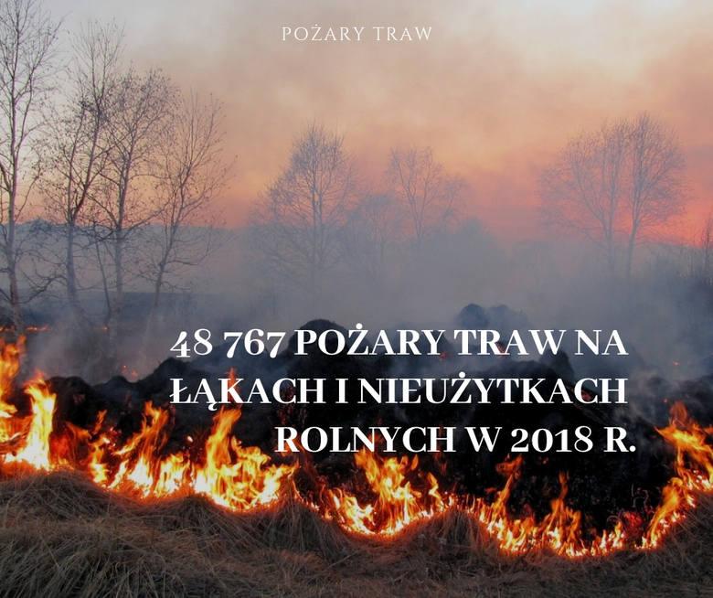 Najgorszy pod tym względem był kwiecień - aż 18 tys. pożarów. Razem z marcowymi zdarzeniami tego typu strażacy odnotowali 25 345 pożarów, co stanowiło