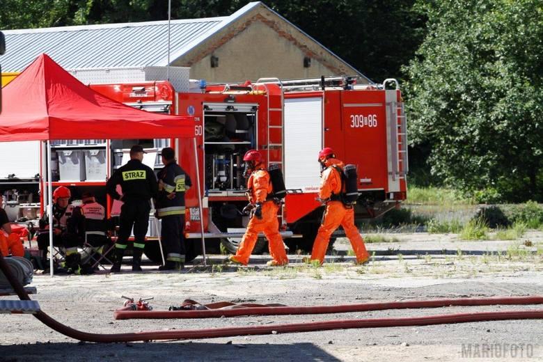W magazynie w Dąbrowie składowanych jest w sumie kilkadziesiąt pojemników z kwasem, w których może być nawet 50 tysięcy litrów niebezpiecznej substa
