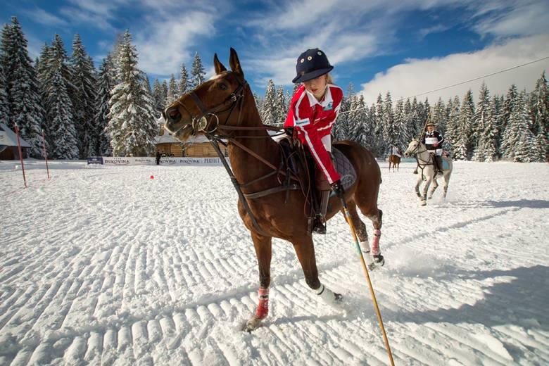 Bukovina Polo Snow Masters, czyli widowiskowe rozgrywki na śniegu [ZDJĘCIA]