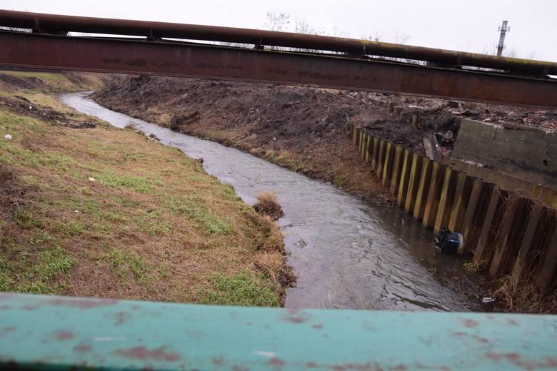 Czarna Struga w Nowej Soli. Zobacz, jak teraz wygląda. Płynie wartki strumień. Mieszkańcy przyznają, że latem nie ma tutaj tyle wody.