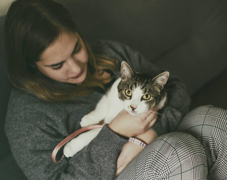 Nie potrzebujemy kotów do walki z gryzoniami. Koty nie powinny żyć na ulicy - mówi Mieszko Eichelberger, koci behawiorysta