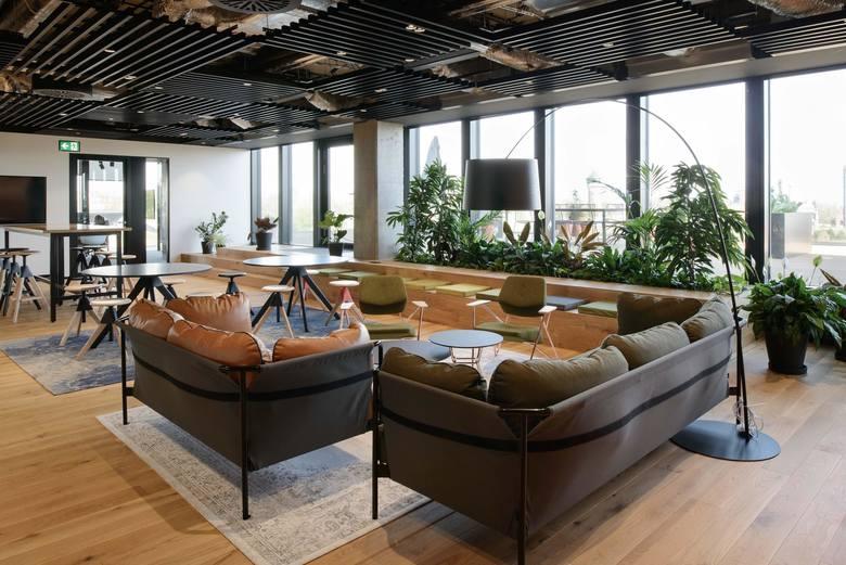 Katowice, biura TDJ. Ściany wyłożone czarną, paloną deską i mnóstwo roślin. Biura TDJ w Katowicach zdobyły wyróżnienie Office Superstar. To wnętrza biurowca