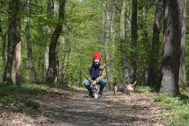 Lasy otwarte. Dla podkrakowskich mieszkańców to ulubione miejsca na odpoczynek, spacery, biegi i wyprawy rowerowe