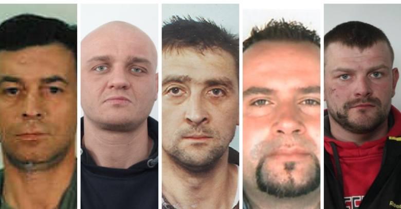 Poszukiwani przestępcy z województwa Kujawsko-Pomorskiego - ich zdjęcia i rysopisy prezentujemy w naszej galerii. Sprawdź, czy kogoś rozpoznajesz! Rysopisy