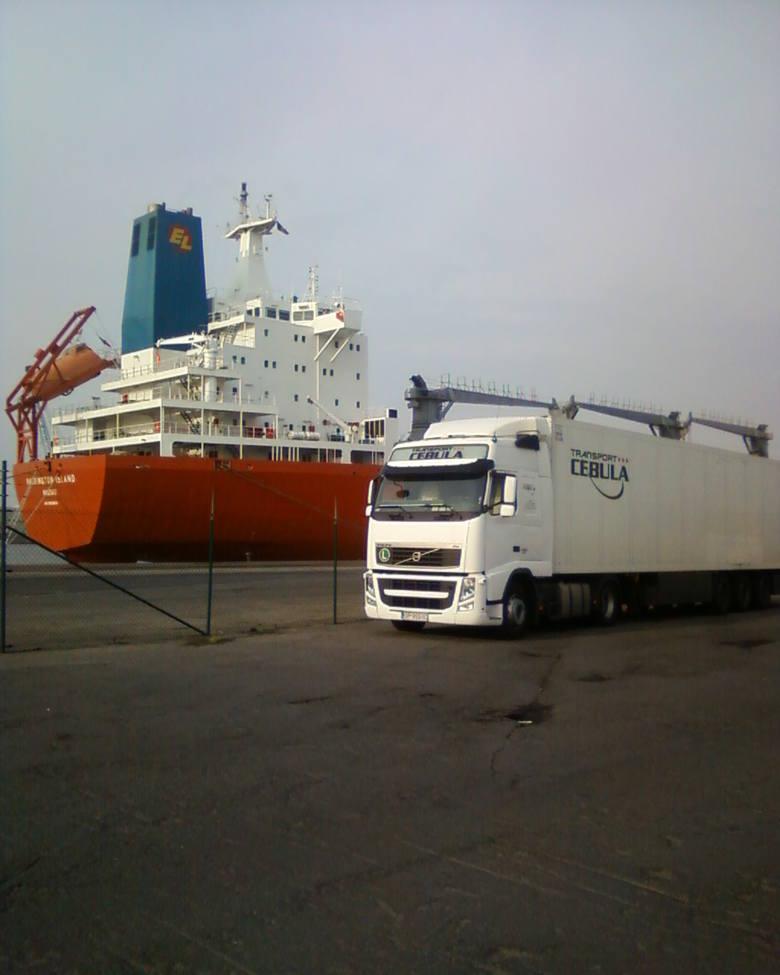Cebula Transport specjalizuje się w przewozie towarów chłodniami.