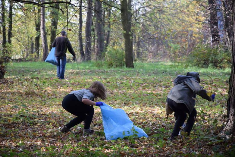 Sprzątanie terenów miejskich, a konktretnie lasu Bila w Skierniewicach [ZDJĘCIA, FILM]