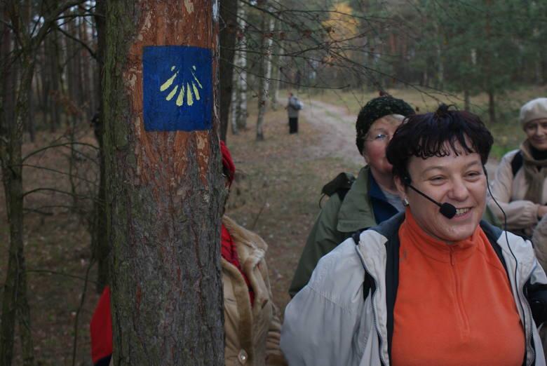Przewodnik Anna Sikorska z turystami na przebiegającym przez lasy kujawsko-pomorskim Szlaku św. Jakuba