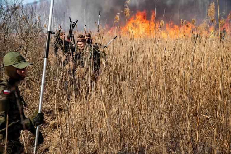 Kibice Jagiellonii dostarczą posiłki i napoje strażakom walczącym z pożarem Biebrzańskiego Parku Narodowego