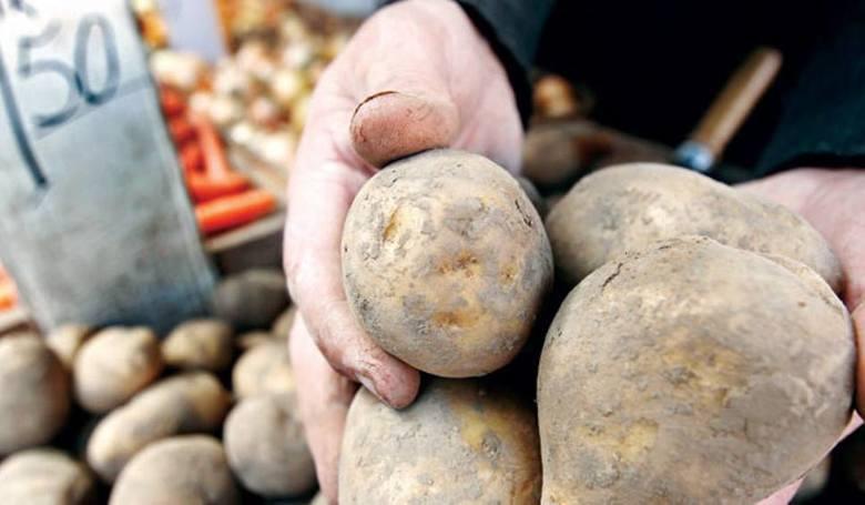 Ziemniak kontra ryż i makaron. Sprawdź, jak branża chce skusić konsumentów