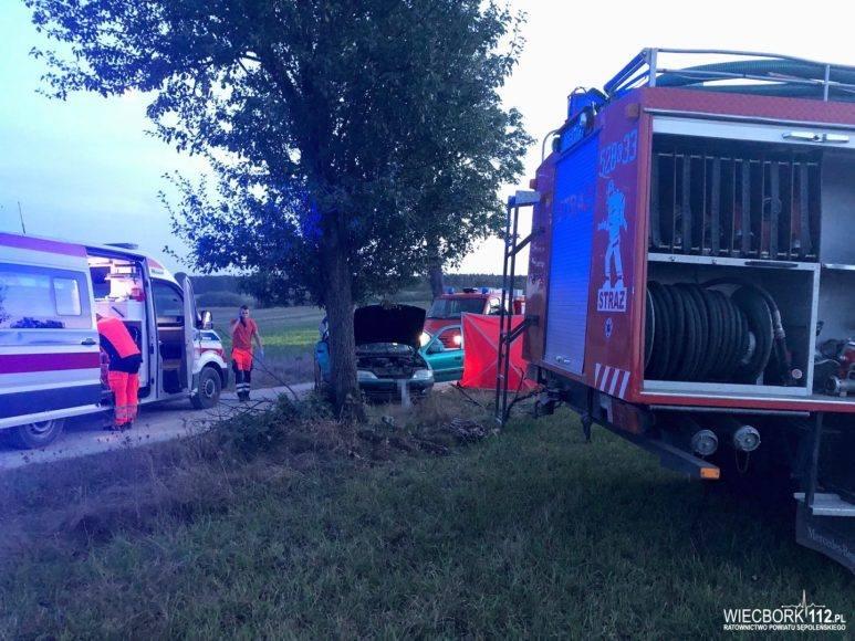 Do wypadku doszło w piątek (6 września) przed godziną 19 na drodze szutrowej między Trzcianami a Włościbórkiem w powiecie sępoleńskim. Według wstępnych