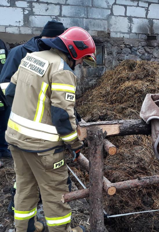 Lorki. 3-latek wpadł do szamba. Dramatyczna akcja ratunkowa (zdjęcia)