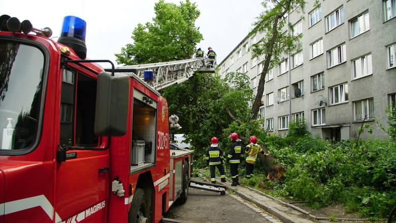 Akcja strażaków przy ulicy Jaracza. Drzewo spadło na zaparkowane samochody