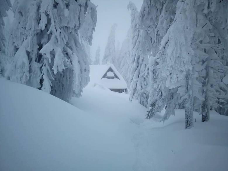 Gorce. Turbacz zasypany śniegiem. Jest pięknie [ZDJĘCIA]