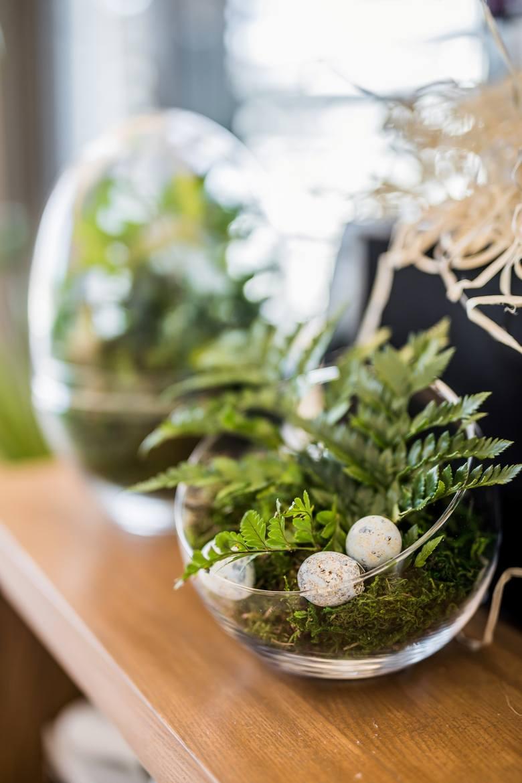 Kompozycje roślinne w szklanych naczyniach można wykonać samodzielnie.