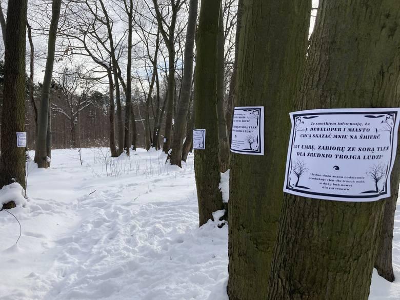 Akcja rozklejania nekrologów na drzewach w Brzeźnie.