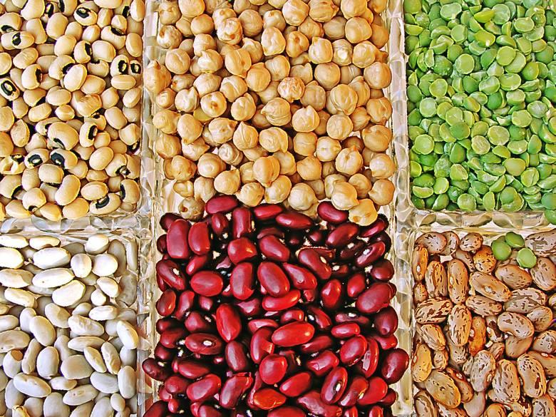 Nasiona roślin strączkowych to podstawowe źródła białka dla osób stosujących dietę wegańską