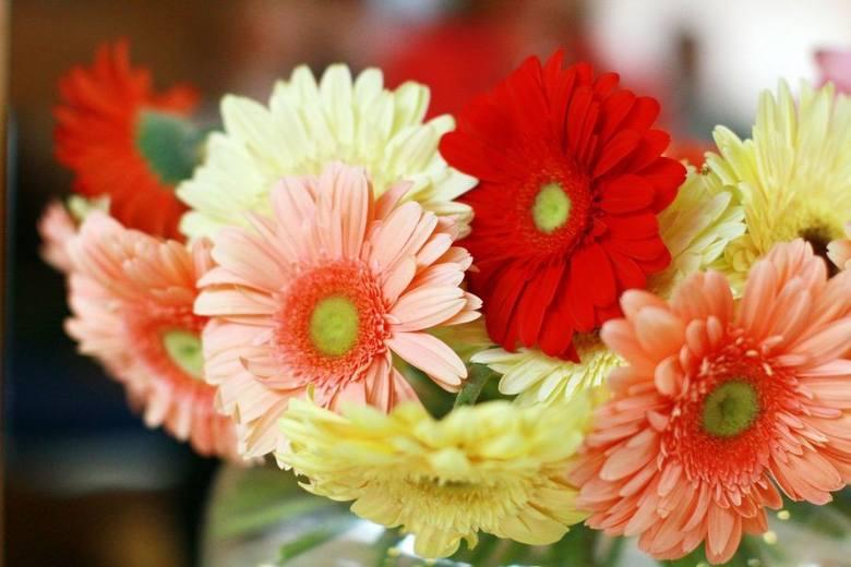 WYJĄTKJOWE życzenia na DZIEŃ MAMY. Piękne życzenia na DZIEŃ MAMY 26.05.19