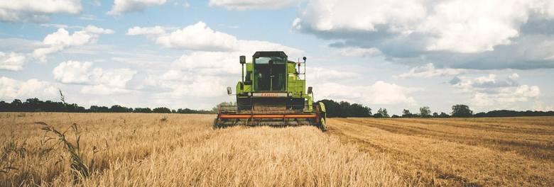 Zmiany w obrocie ziemią rolną w 2019 roku. Co i kiedy zmieni się w obrocie gruntami?