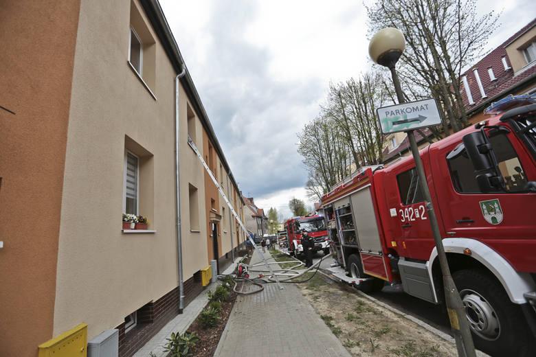 Pożar w mieszkaniu przy ul. Lipowej 7 w Zielonej Górze wybuchł we wtorek, 19 kwietnia