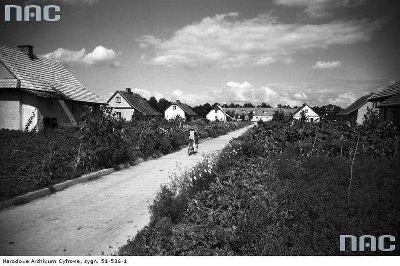 Osiedlowa ulica na Ursynowie