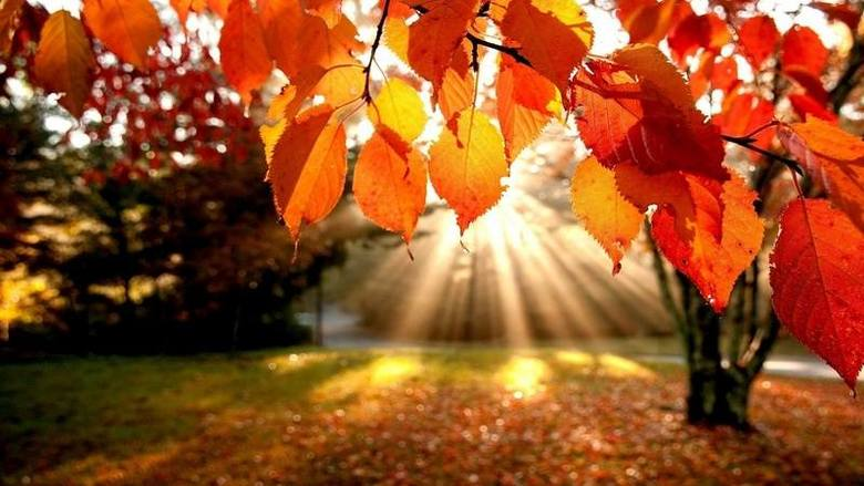 Pogoda na środę. Wróci słoneczna jesień?
