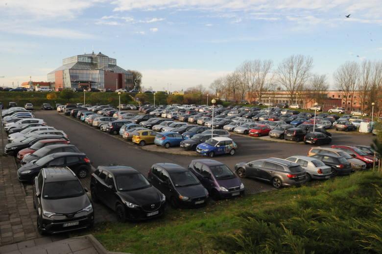 Obecny parking przy Palmiarni na co dzień jest zapełniony samochodami
