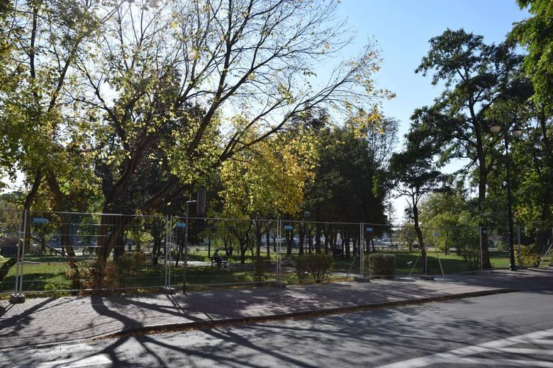 W Nowej Soli szykowany jest plac pod budowę krytej pływalni. Zniknęła część drzew i krzewów