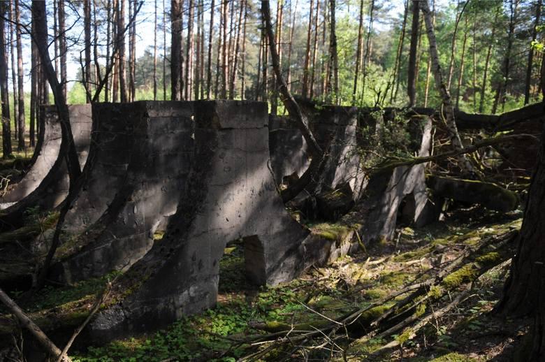 Pozostałości po fabryce broni w lesie w Krzystkowicach