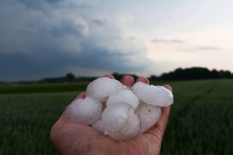 Burzom mogą towarzyszy gwałtowne ulewy oraz opady gradu.