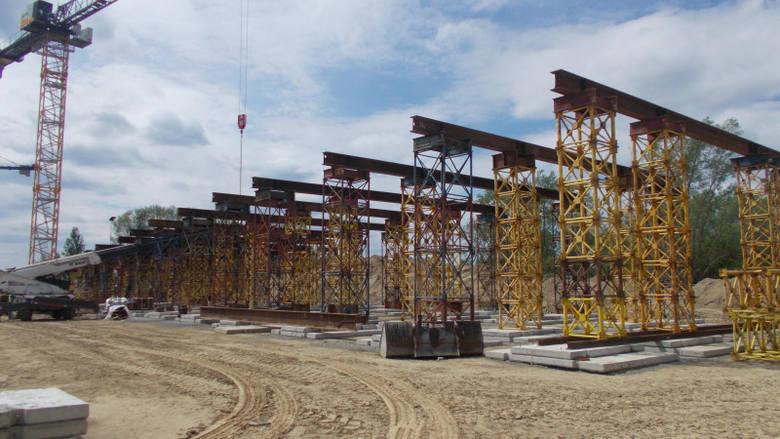 Budowa S19 na odcinku Zdziary - Rudnik nad Sanem, o długości 9 kmWykonawca (Mosty Łódź S.A.) prowadzi prace przygotowawcze, w tym m.in. karczowanie pni.