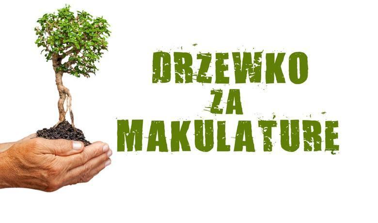"""Drzewko za makulaturę 2019. Akcja """"Dziennika Bałtyckiego"""" na Pomorzu za nami. Zobacz relację z tych wydarzeń!"""