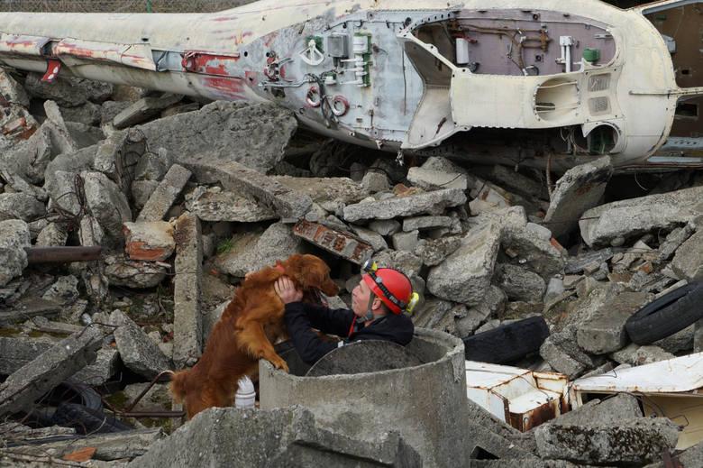 Nowy Sącz. Pokazowe szkolenie psów ratowniczych. Musiały odszukać człowieka uwięzionego pod gruzem [ZDJĘCIA]