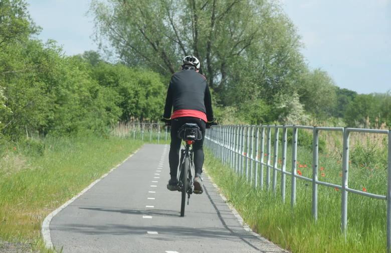 Ścieżka rowerowa Zielona Góra - Zawada - Cigacice, choć nie bez problemów w trakcie jej budowy, dziś cieszy się dużą popularnością wśród rowerzystów.