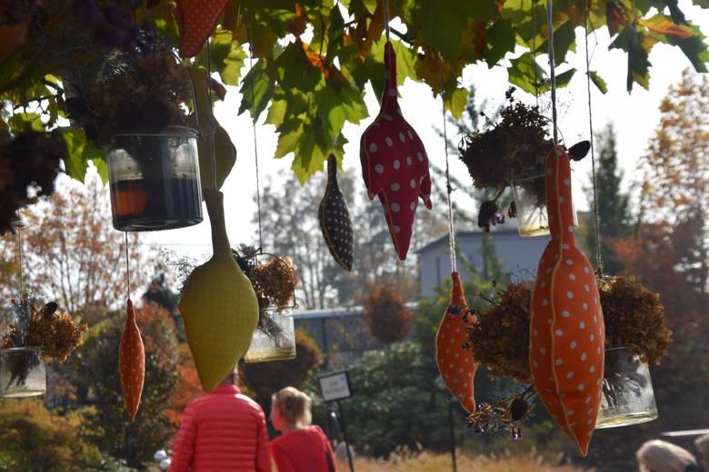 Ogrody Kapias w Goczałkowicach Zdroju. Barwy jesieni