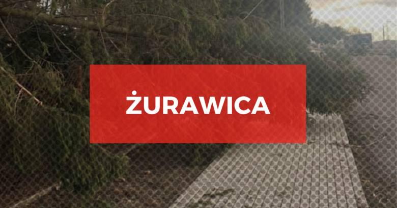 Ogromne wichury nad Podkarpaciem. Ponad 520 interwencji straży pożarnej, połamane drzewa, zerwane dachy