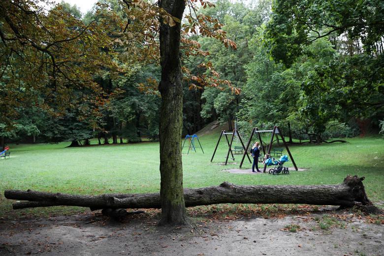 Zabytkowy park Bednarskiego w Podgórzu ma zostać wyremontowany