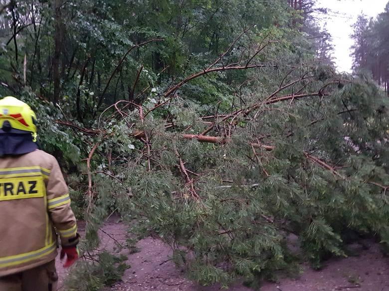 Ochotnicza Straż Pożarna w Złocieńcu publikuje kolejne zdjęcia z akcji, które przeprowadzają od soboty wieczorem, kiedy to nad Złocieńcem przeszła burza