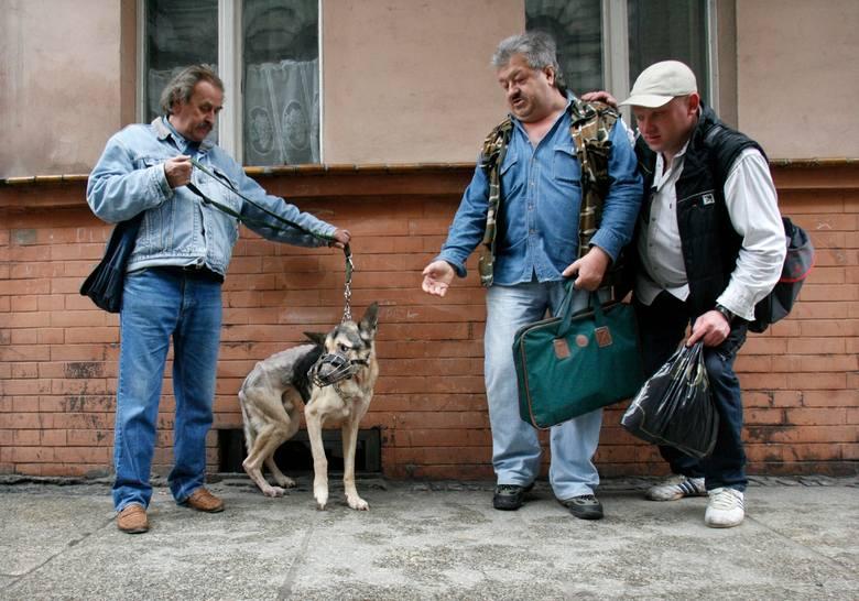 Pies na skraju wycieńczenia. Legnickie TOZ interweniuje (ZDJĘCIA)