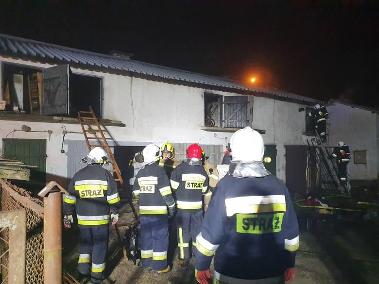 Pożar zabudowań gospodarczych koło Czaplinka [zdjęcia]
