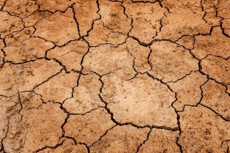 Świat: Przyrost temperatur na świecie ma być największy od ostatnich 10 000 lat. Na naszych szerokościach geograficznych mroźne zimy po 2020 r. staną
