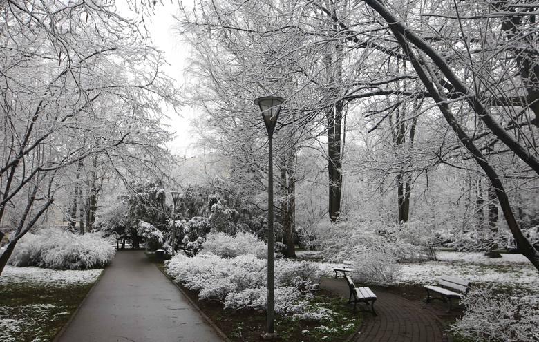 Po wiosennej aurze, która towarzyszyła nam w trakcie świąt wielkanocnych, w kwietniowy poranek do Rzeszowa powróciła zima. Zobaczcie zdjęcia.