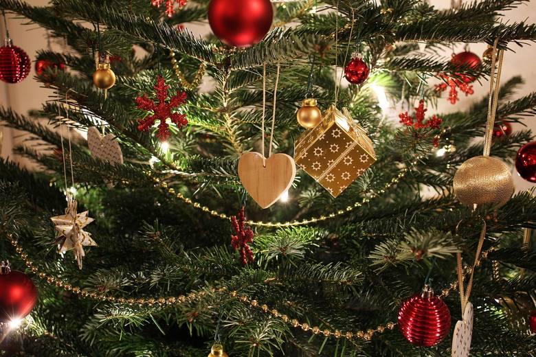 Choinka żywa czy sztuczna? WADY I ZALETY. Jaką choinkę wybrać na święta do domu? Przygotowania do Bożego Narodzenia