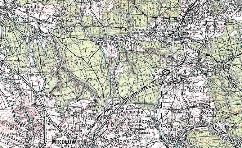 Przemarsz wojsk niemieckich przez ul. 3 Maja w Katowicach
